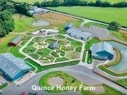 North Devon Holiday Cottage Quince Honey Farm
